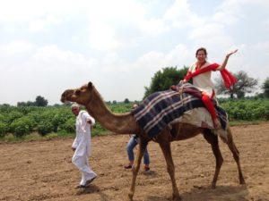 Kuznia on a camel