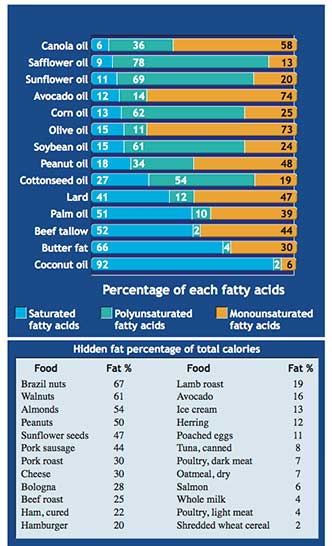Table re: lips, fat percentage