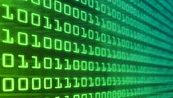 data, stock