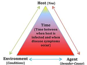Health Yourself -- Epidemiologic Triangle