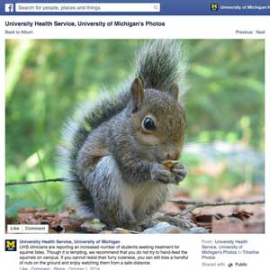 Squirrel warning, via social media