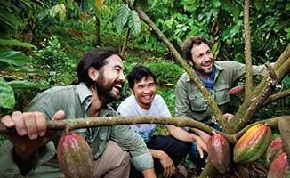 Vietnamese jungle with Marou