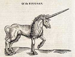 Unicorn, stock