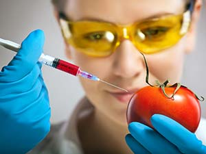 Stock image: Tomato gets injection