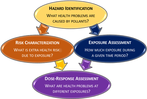 Risk assessment graphic, Health Yourself, 5-18