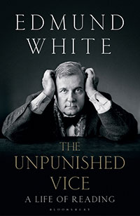 The Unpunished Vice book cover