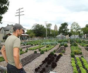 Tyson Gersh surveys farm