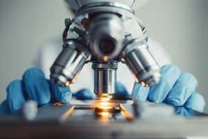 Microscope (stock image)