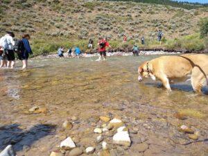 Camp Davis alumni hike river. (Image: Jeff Burtka.)