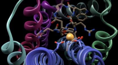 Illustration of protein