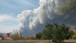 Cal Wood Fire