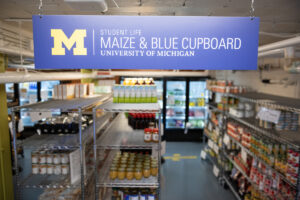 Maize & Blue Cupboard