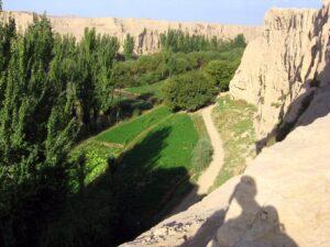 Turpan Oasis in Northwest China