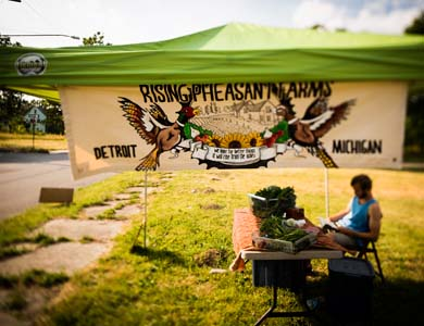 The family sells produce at their own roadside stand, as well as at Detroit's Eastern Market. (Image by Dave Lewinski.)