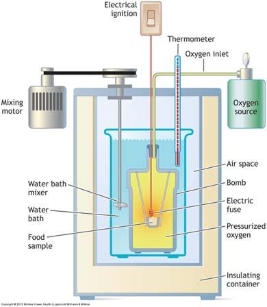 Graphic of a calorimeter.