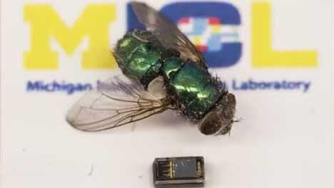 World's smallest computer, COE