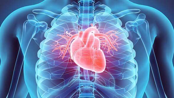 Stock illustration of beating heart
